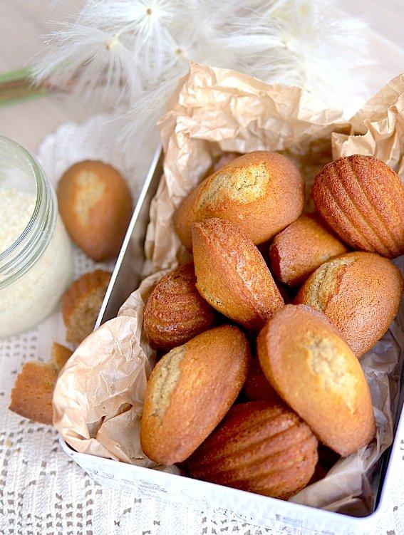 Madeleines à la vanille sans gluten et sans lactose pour un goûter sain et gourmand !